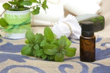 Relieve Nausea And Indigestion Using Essential Oils