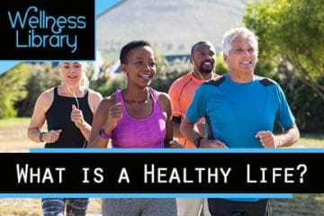 What is a Healthy Life?
