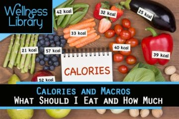 Calories and Macros – What Should I Eat and How Much