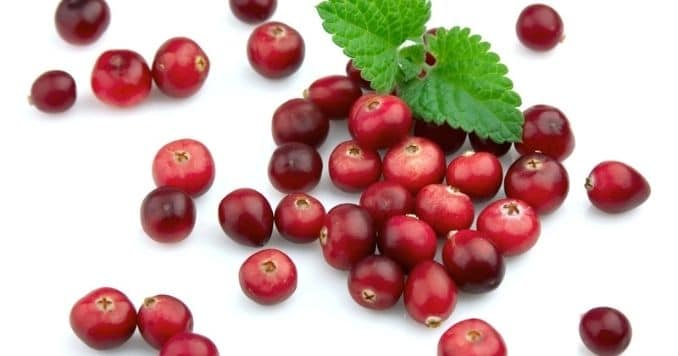 5 Science-Backed Health Benefits of Cranberries