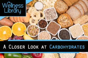 A Closer Look at Carbohydrates