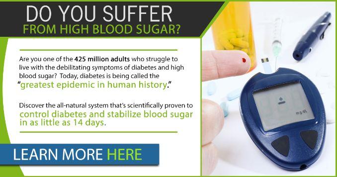 14 Day Diabetes Control Quick Start Program Digital Download