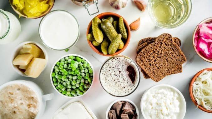 Probiotic Fermented Food Sources