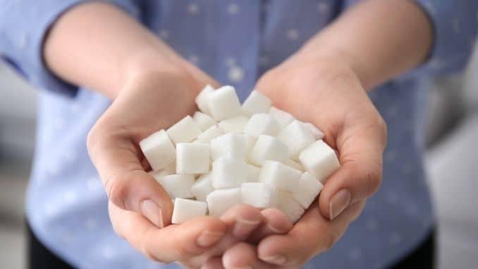 holding sugar cubes