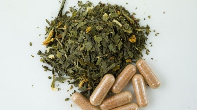 Green tea herbs and extract capsules
