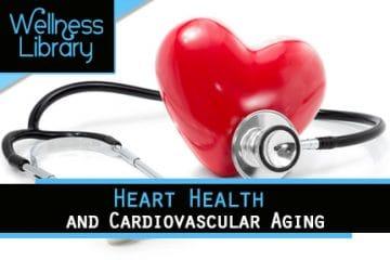 Heart Health and Cardiovascular Aging