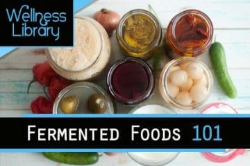 Fermented Foods 101