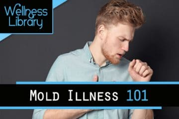 Mold Illness 101