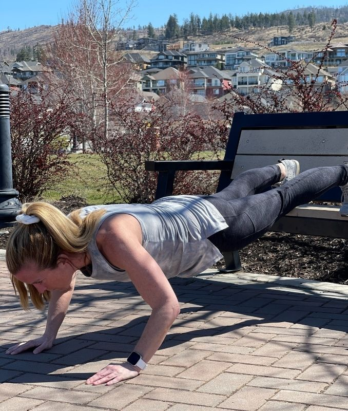 Reverse Inverted Push-Up 2